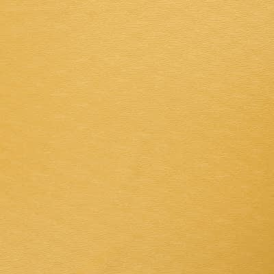 Destiny_17-Gold_FlatShot