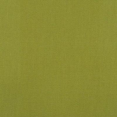 Dona-14-Lime
