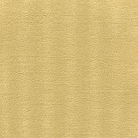 3200-02-LATTE