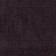 GUAN-06-BLACK
