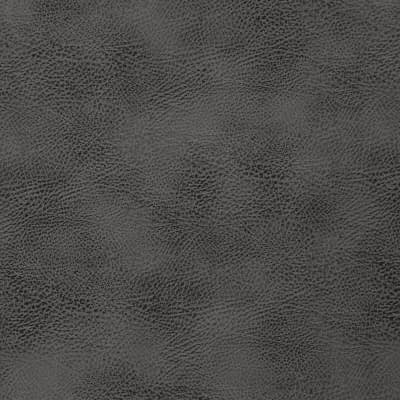 Tap_08-Beluga_FlatShot