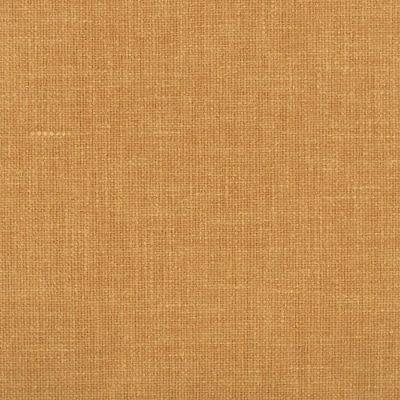 Fay-05-Sandshell
